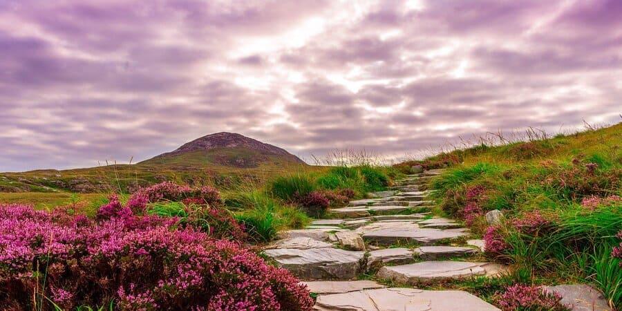 los paisajes naturales en irlanda son de lo mejor