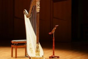 Instrumento símbolo irlandés
